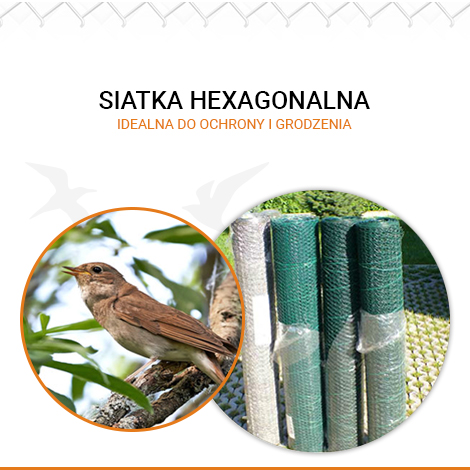 Siatka hexagonalna